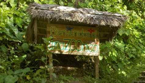 AmaZoonico Wildlife Amazon Rescue Center in Ecuador